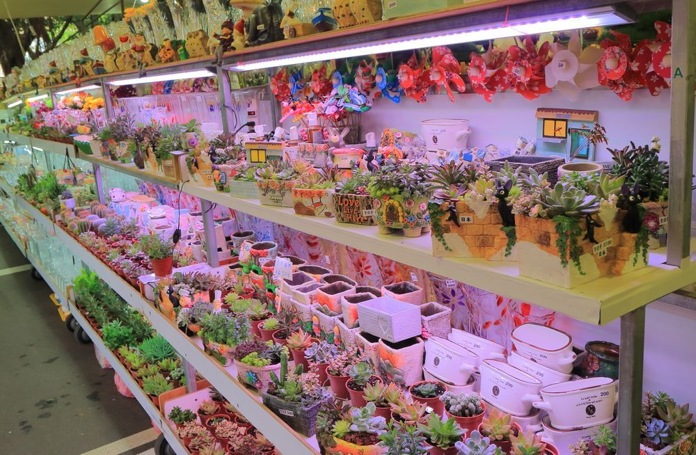 Jianguo Flower Market
