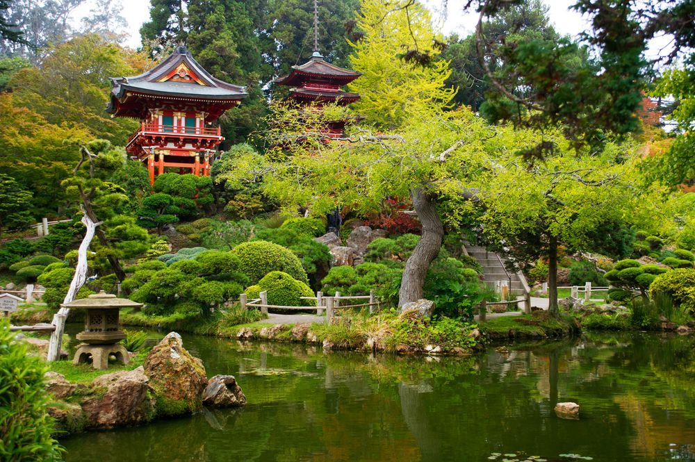 Japanese Tea Gardens Golden Gate Park