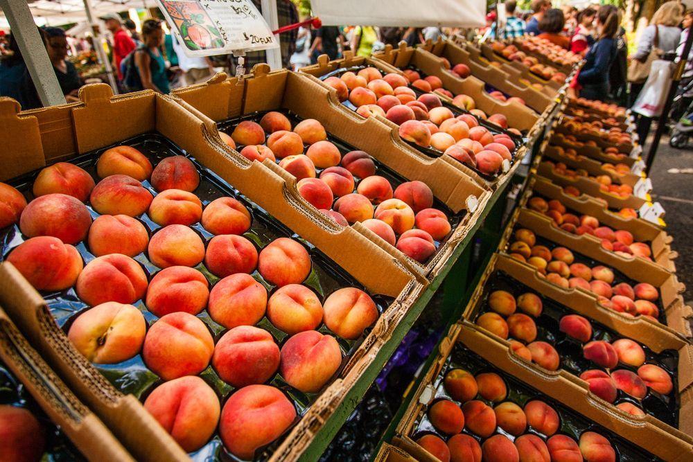Portland's Farmer Market
