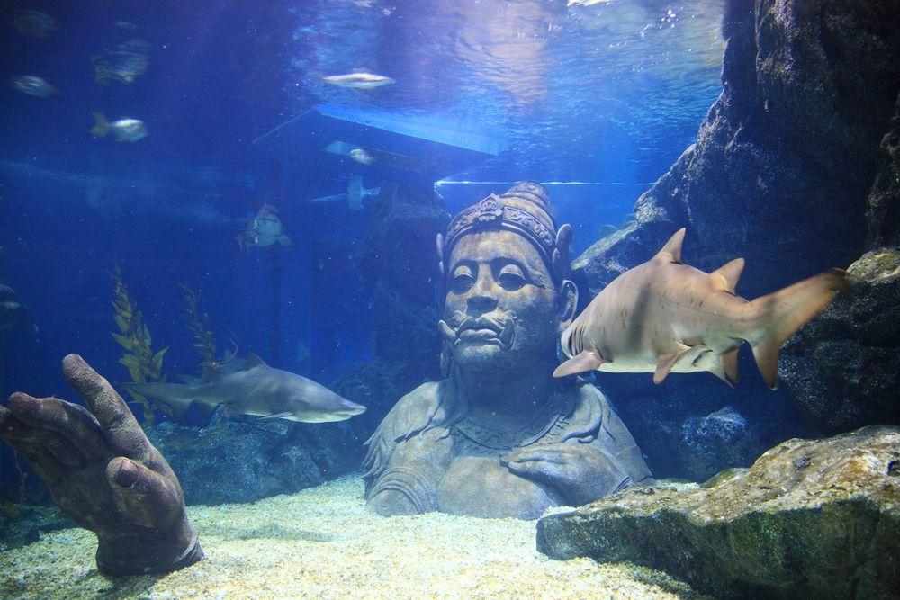 Siam Ocean World Aquarium