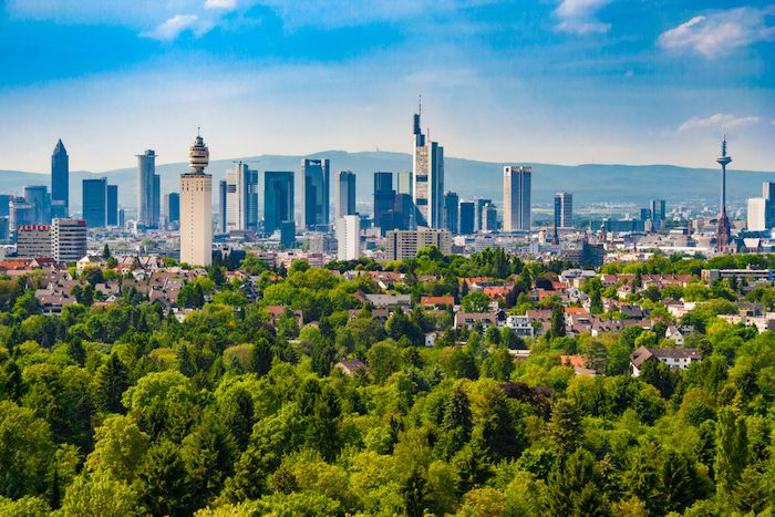 Frankfurt City Forest