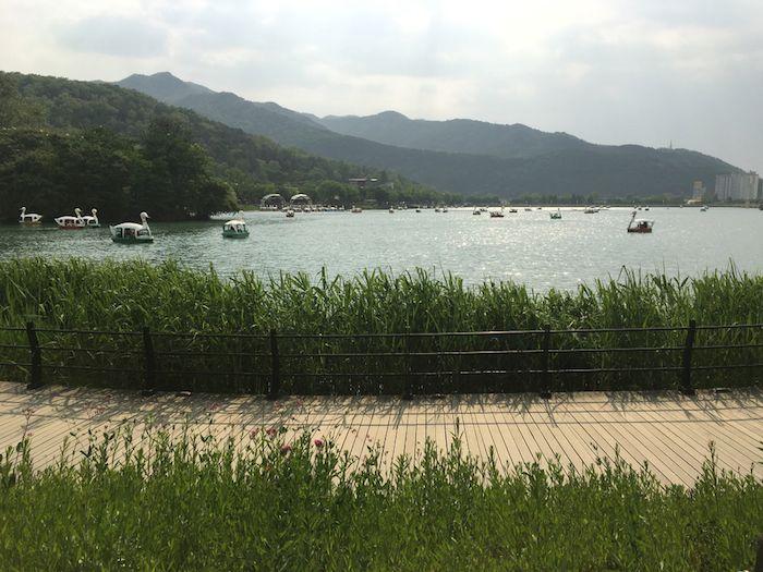 Suseong-gu / Suseong District
