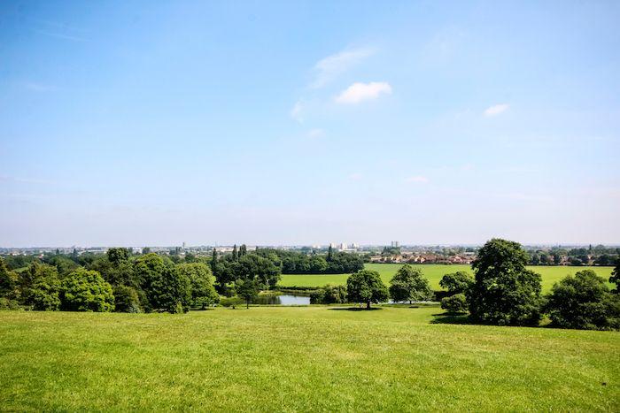 Cusworth Park Tree Trail