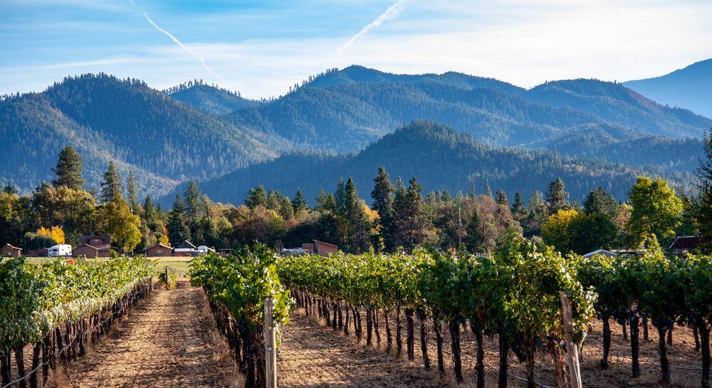 ashland winery