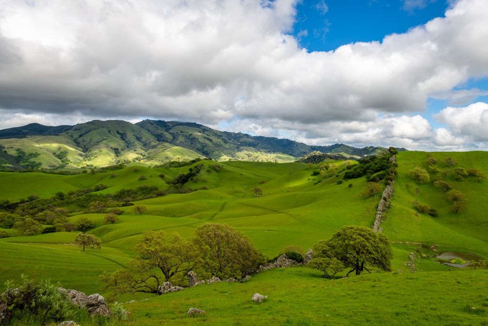 Diablo Hills Regional Park
