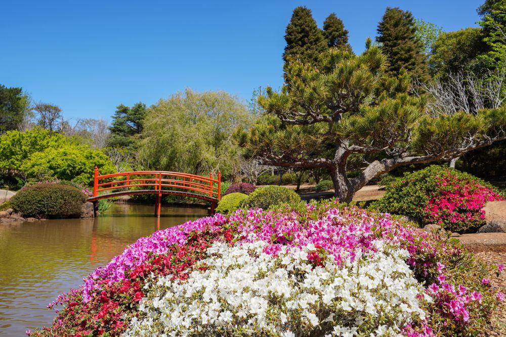 Ju Raku En Japanese Gardens