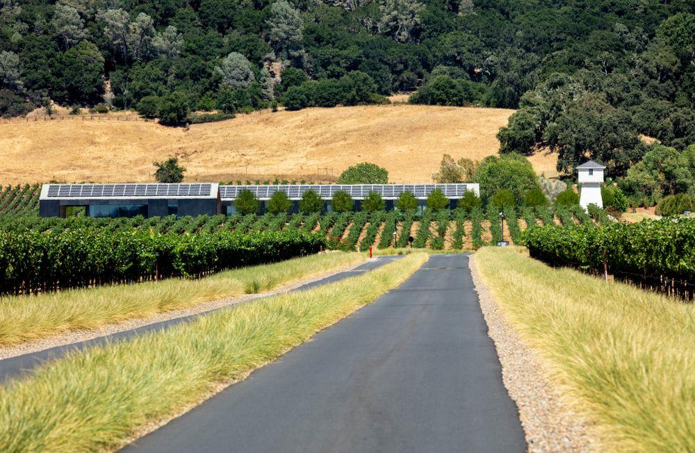 The Wine Road