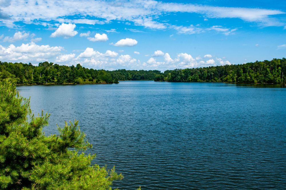 Randleman Lake
