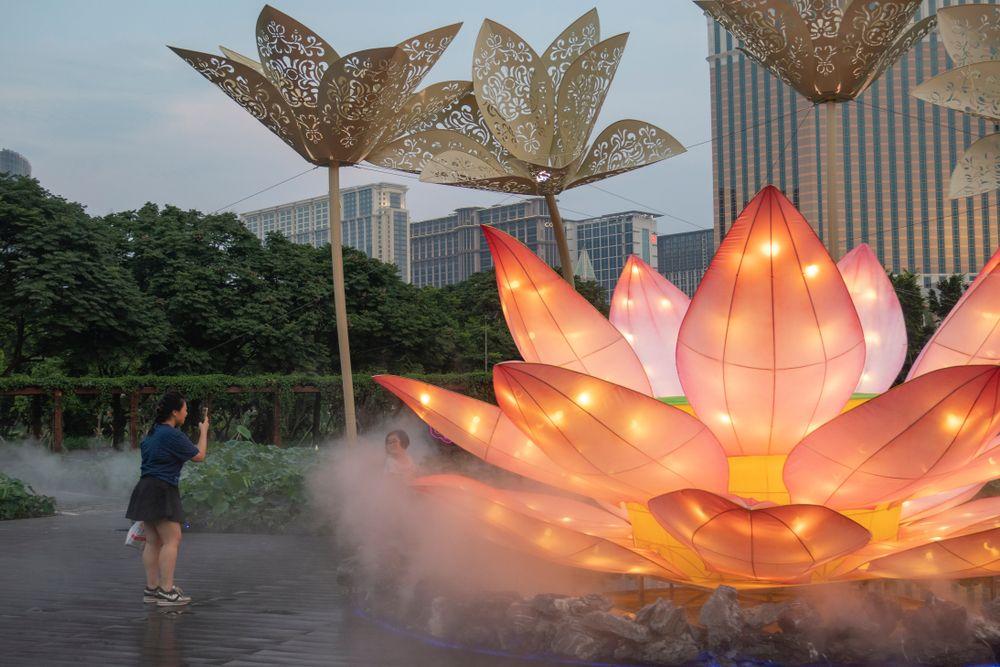 Lotus Flower Festival Macau