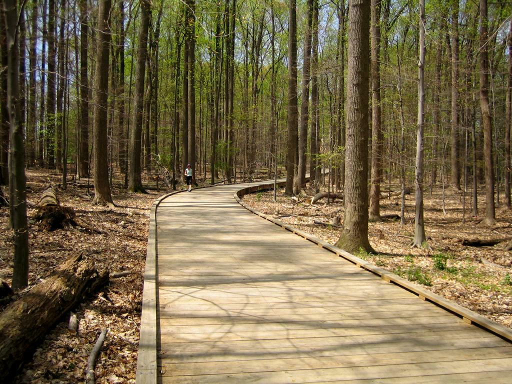Matthew Henson trail