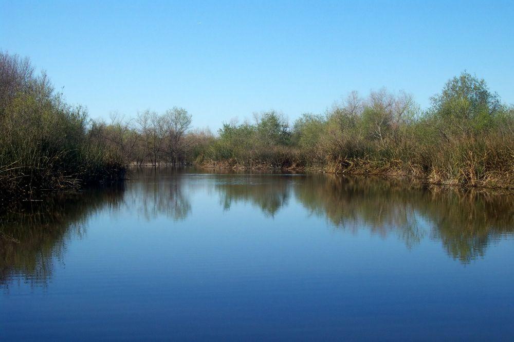 San Joaquin Marsh and wetlands Sanctuary