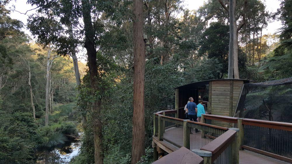 Blackbutt Nature Reserve