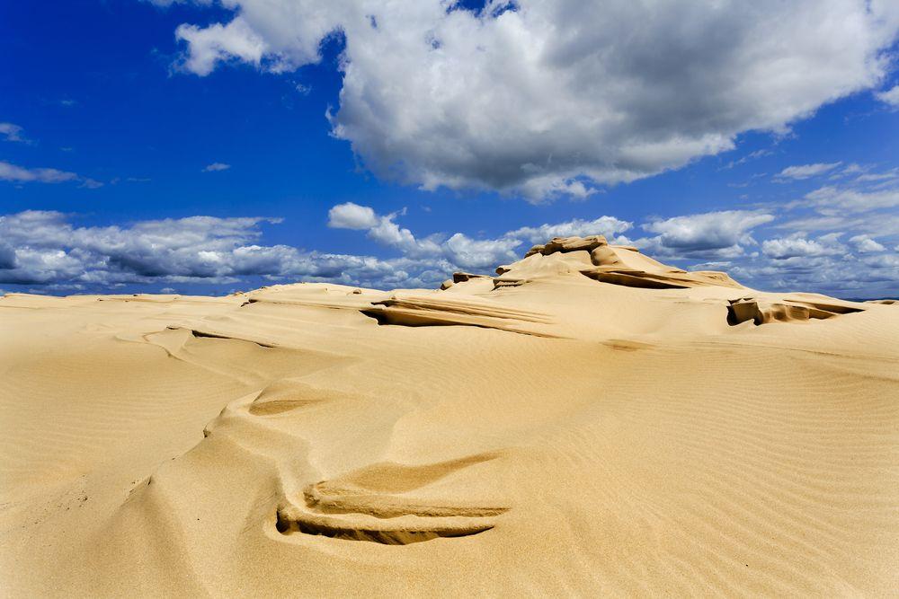 Dunes on Stockton Beach