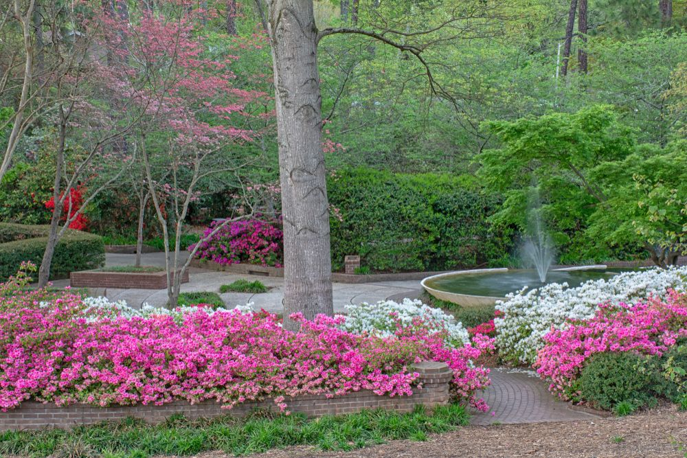 Glencairn gardens in Rock Hill