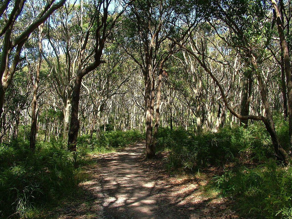 Glenrock state conservation area