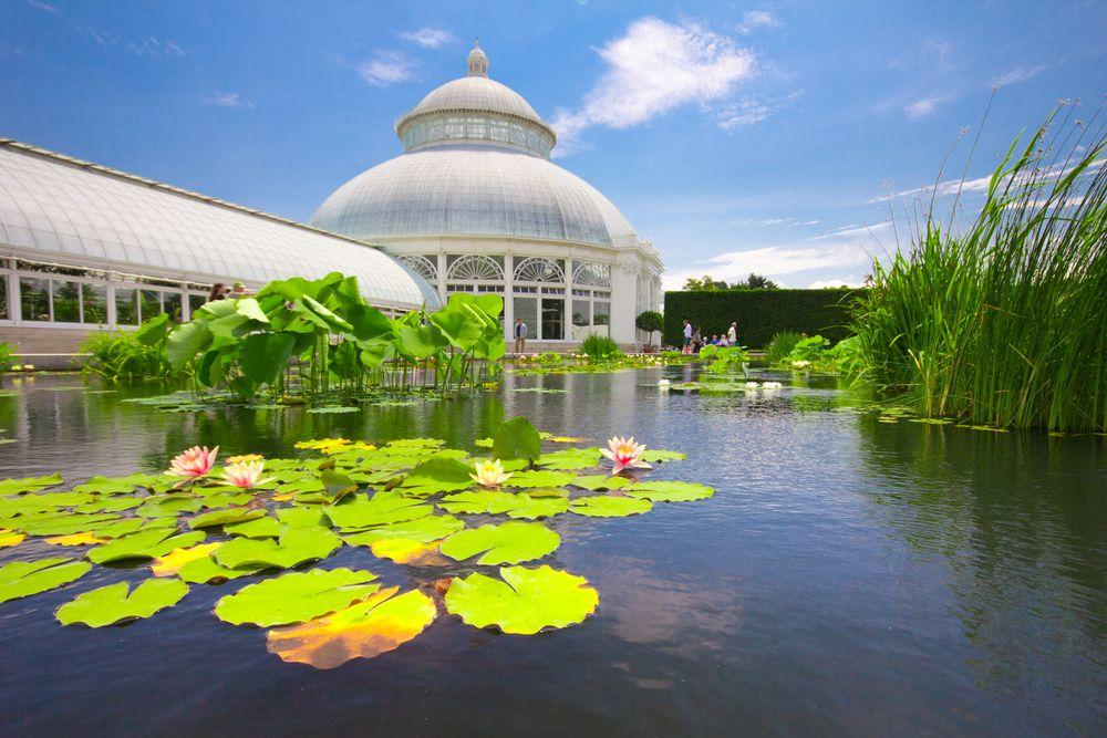 NY Botanical garden, Bronx