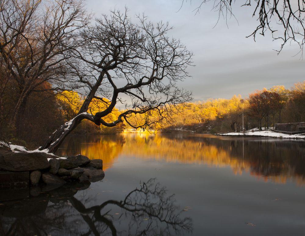 Van Cortlandt Park in Bronx