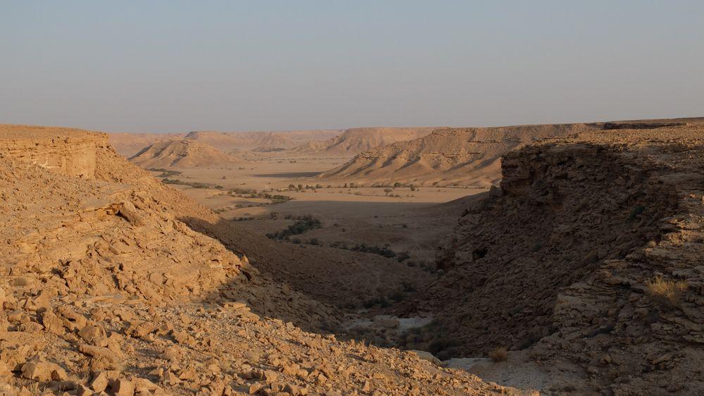 Acacia Valley