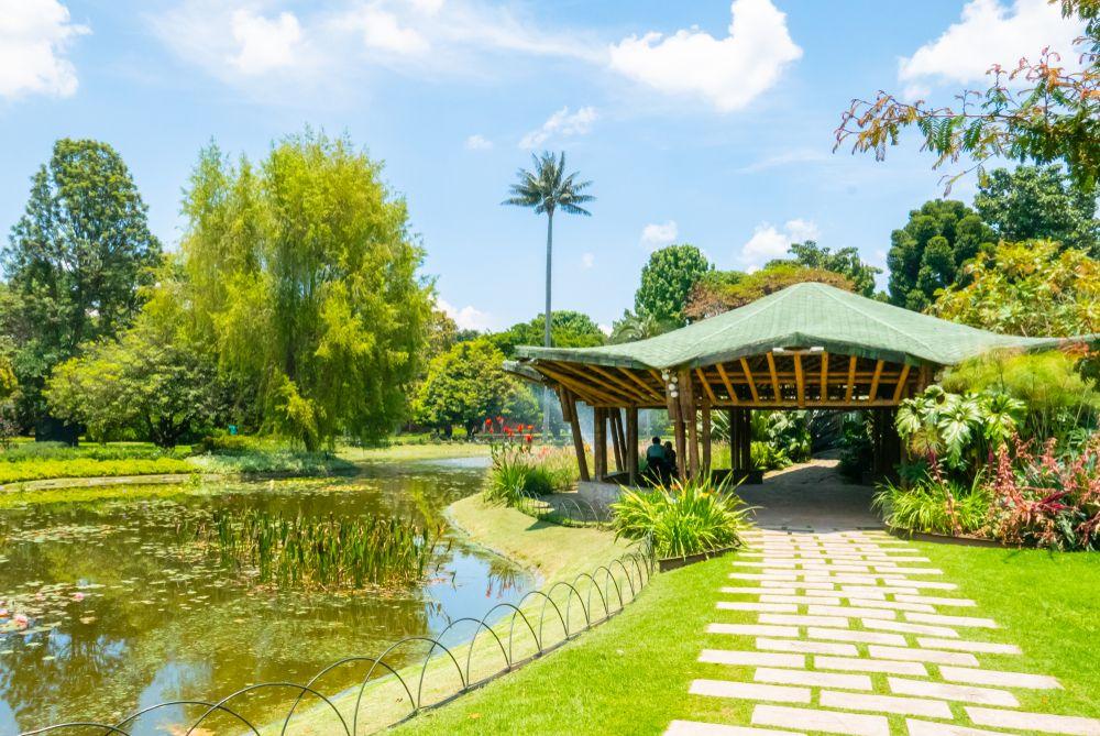Botanical Graden of Bogota