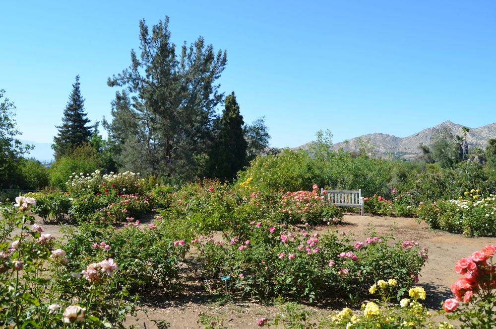 Botanic Garden Riverside