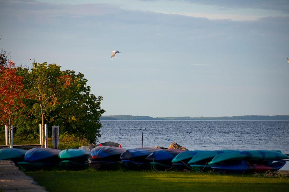 Kayaks at Clinch Park