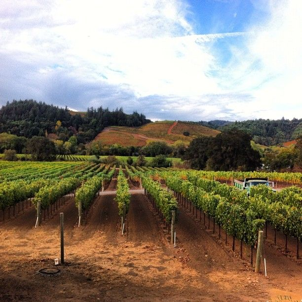 Crossing Vineyards and Winery