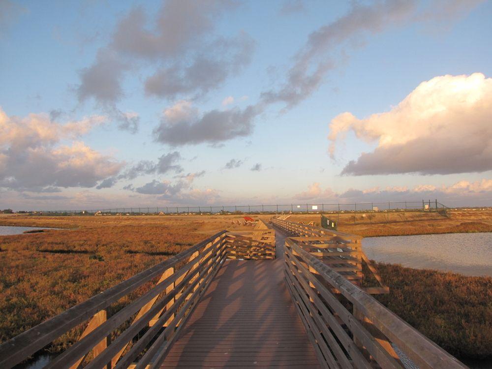 Footbridge at Bolsa Chica Ecological Reserve