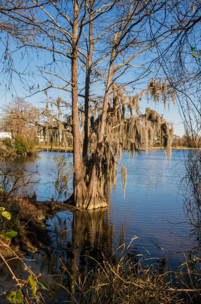 Lawson Creek Park