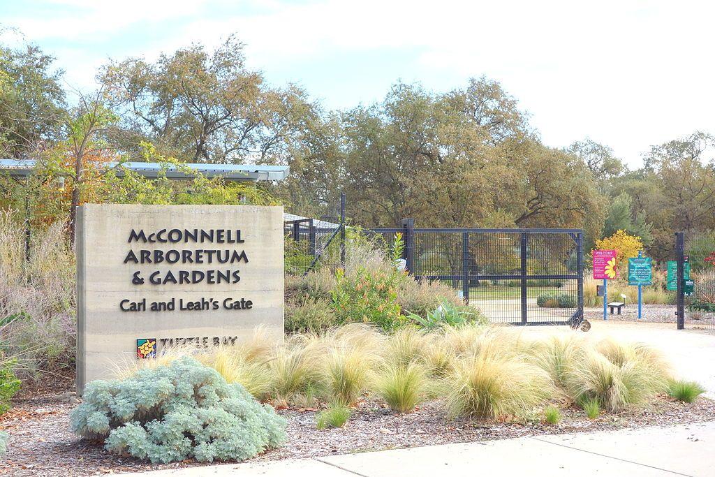 McConnell Arboretum