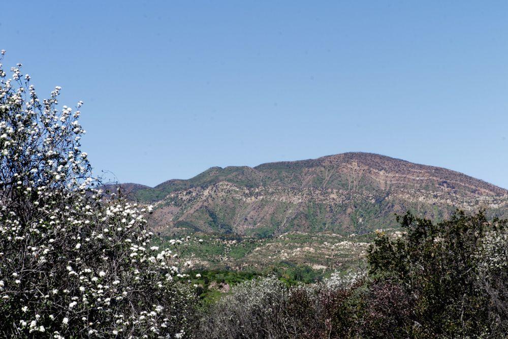 Valley View Preserve