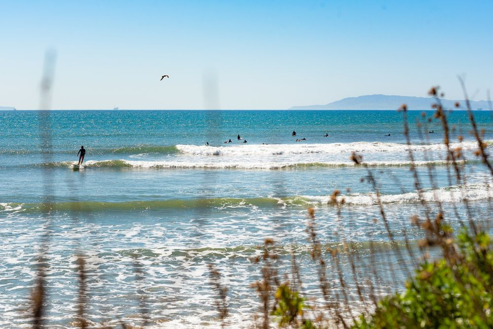 Surfers at Ventura Point Beach