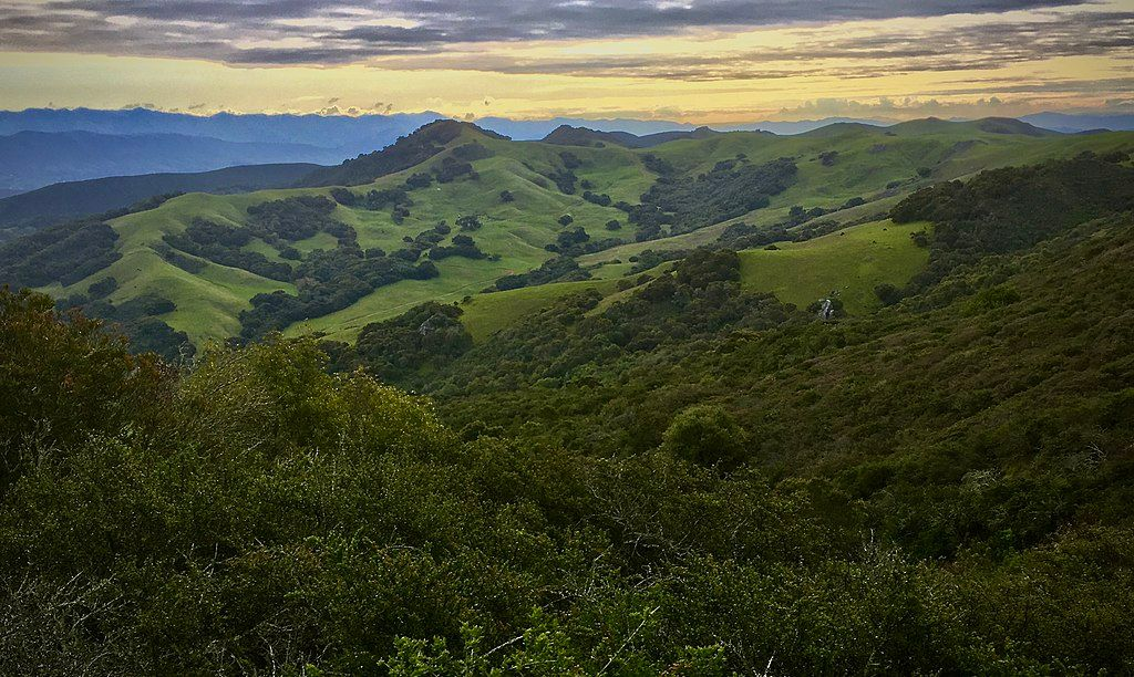 Irish Hills Natural Reserve in San Luis Obispo
