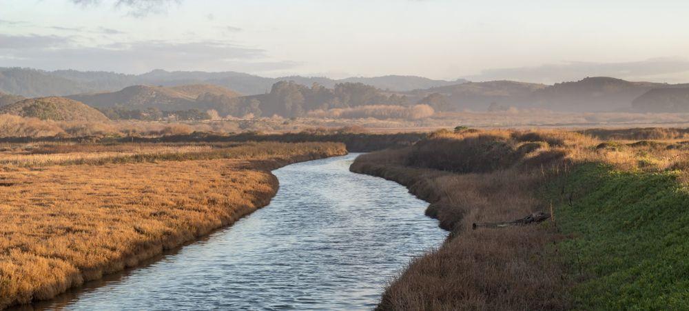 Pescadero Marsh Natural Preserve