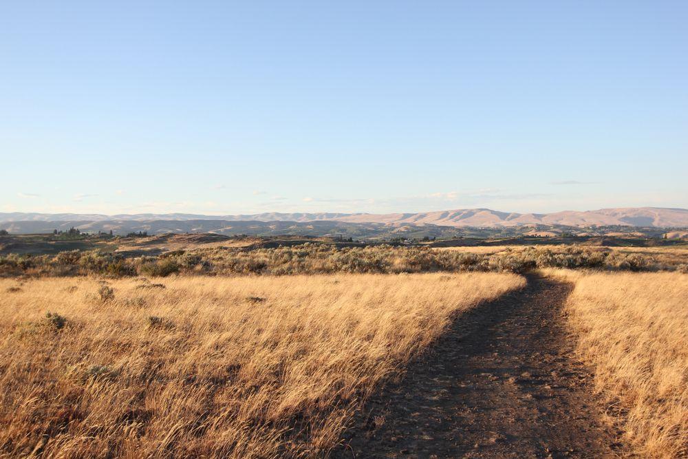 Cowiche Canyon Trails