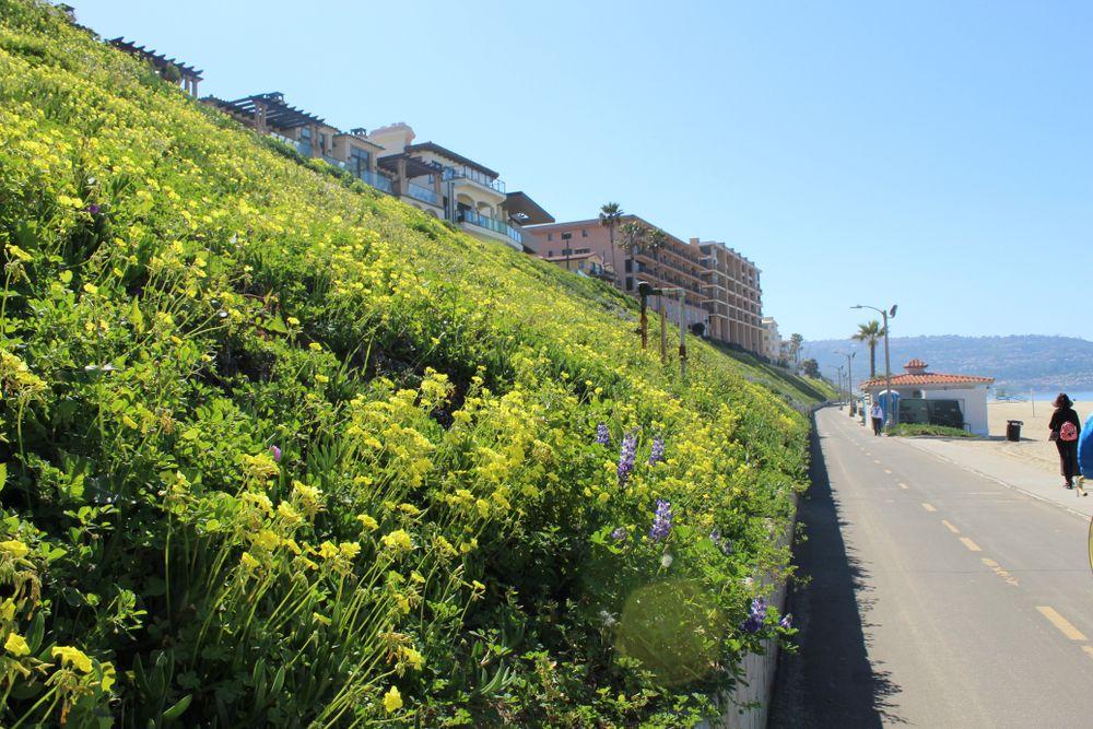 Redondo Beach Bike Path