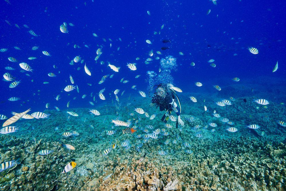 Scuba Diving in Guam