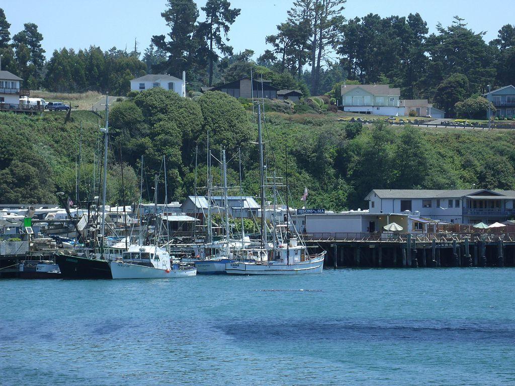 Noyo Harbor District
