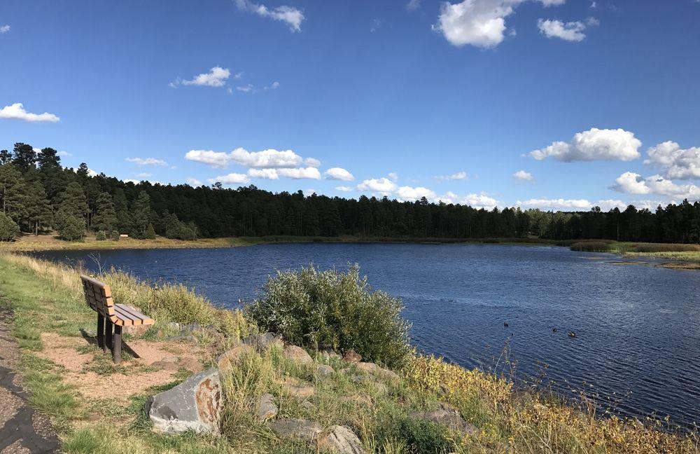 Woodland lake park