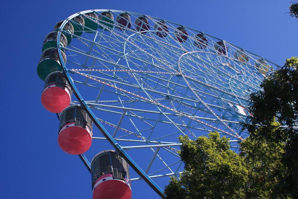 Ferris Wheel in Fair Park