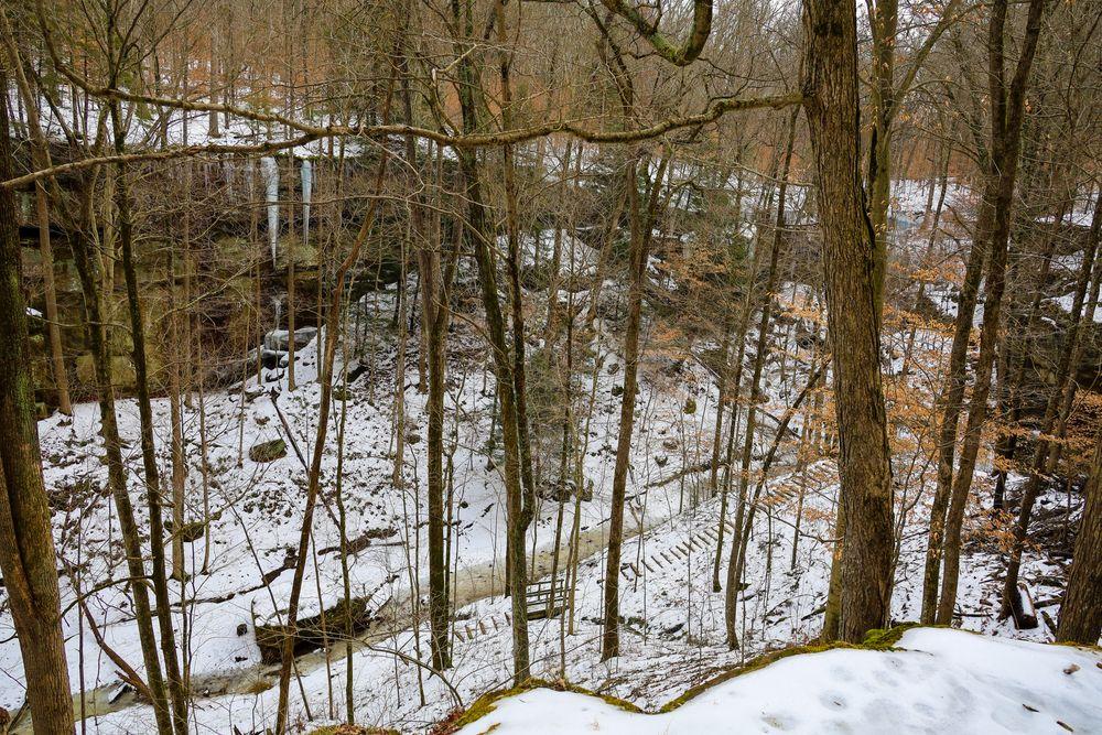 Hoosier national forest in winter