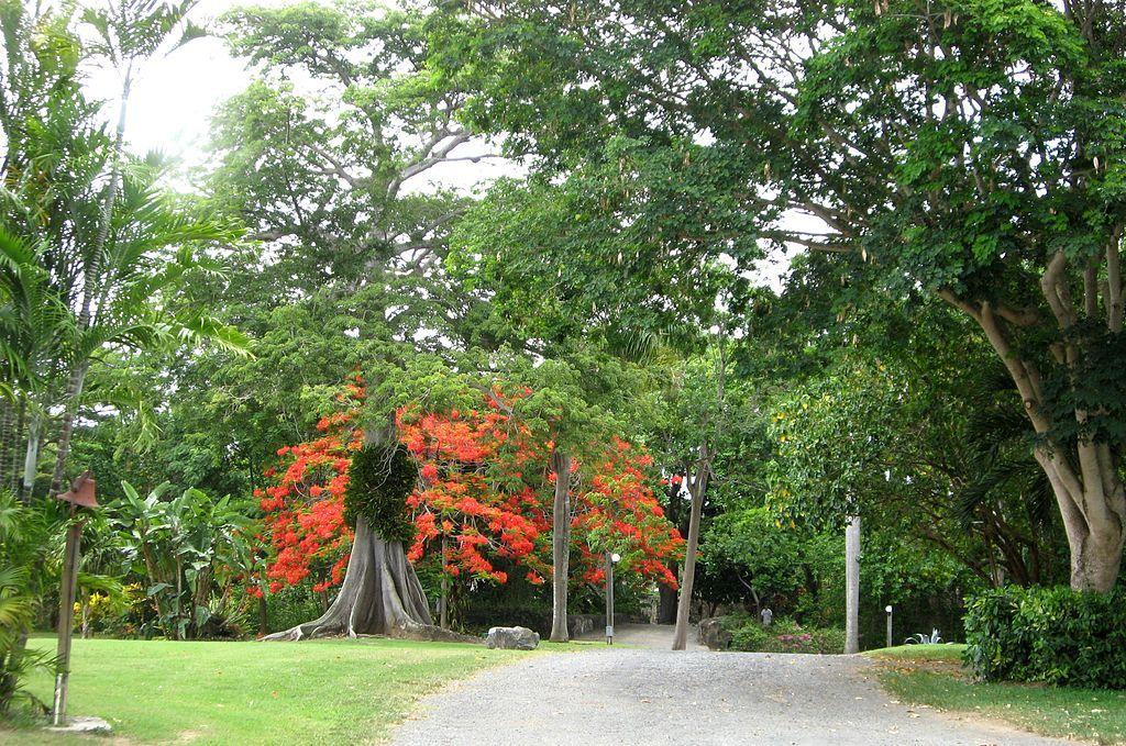 St. George Botanical Garden