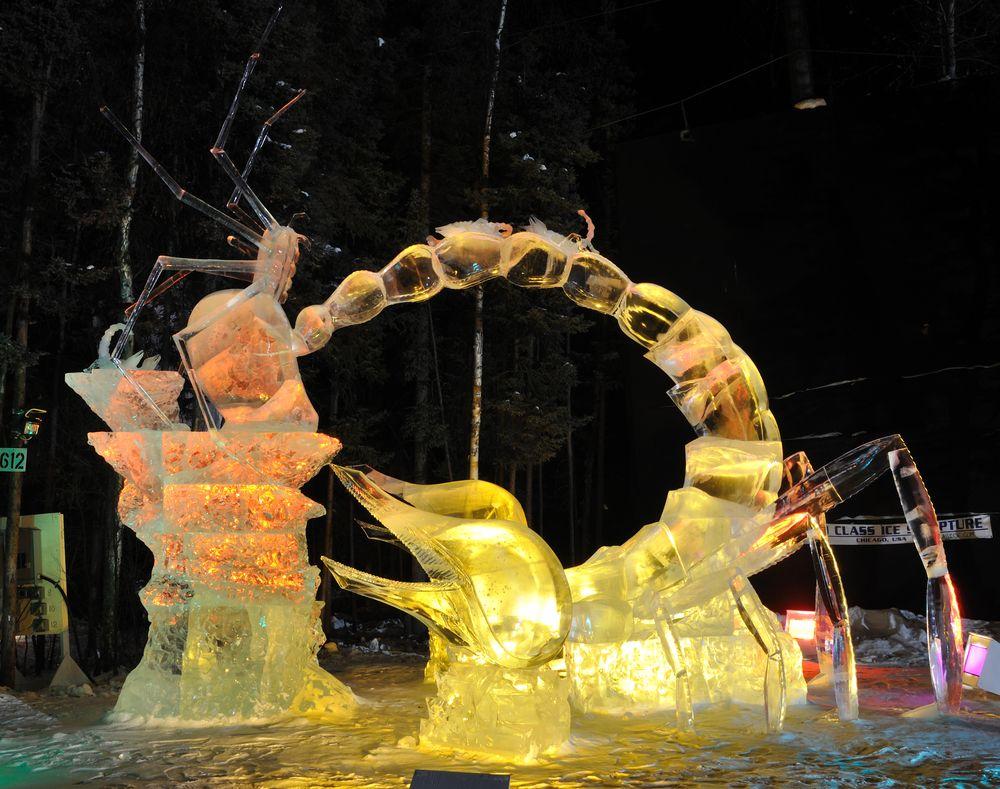 Display at World Ice Art Championship