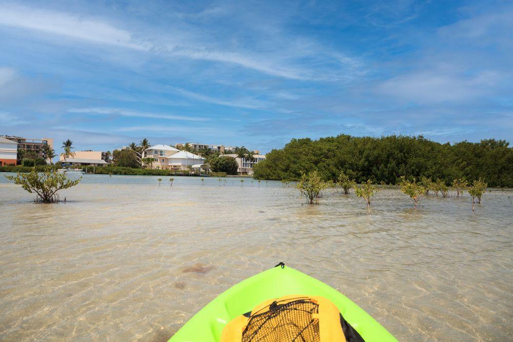 Kayaking in Bonita Springs