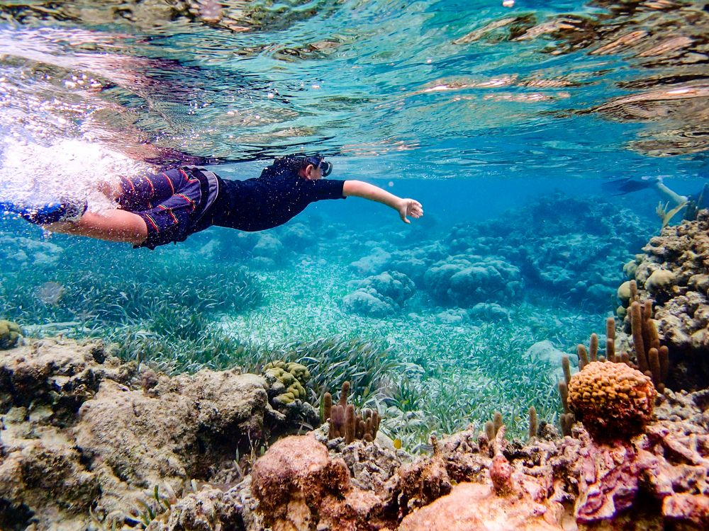 Snorkeling in Caye Ambergris