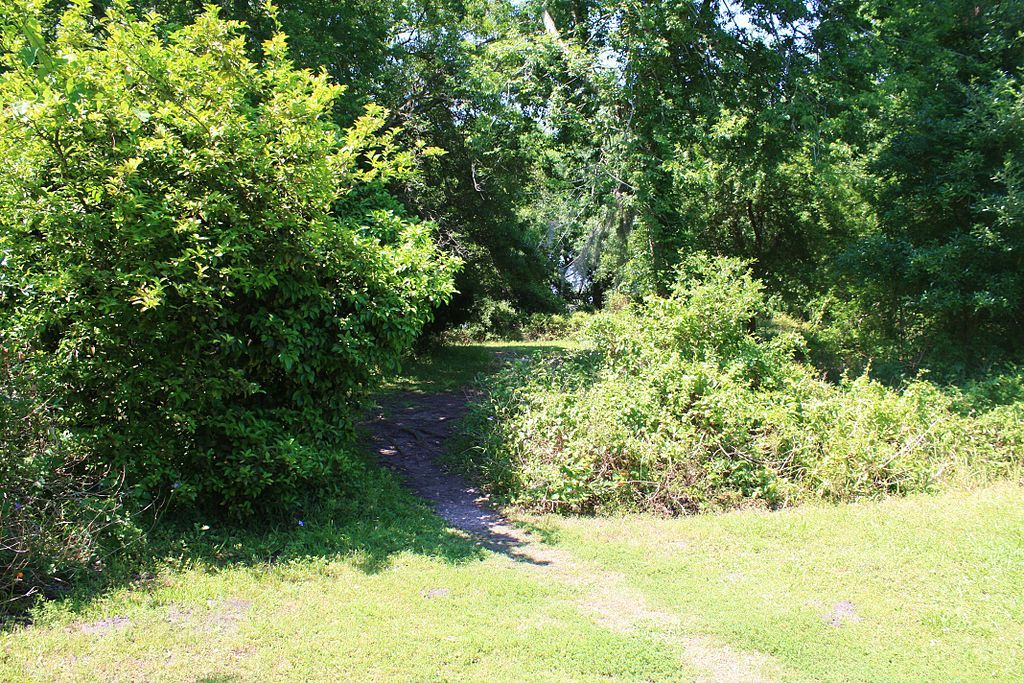 Indian Shell Mound Park