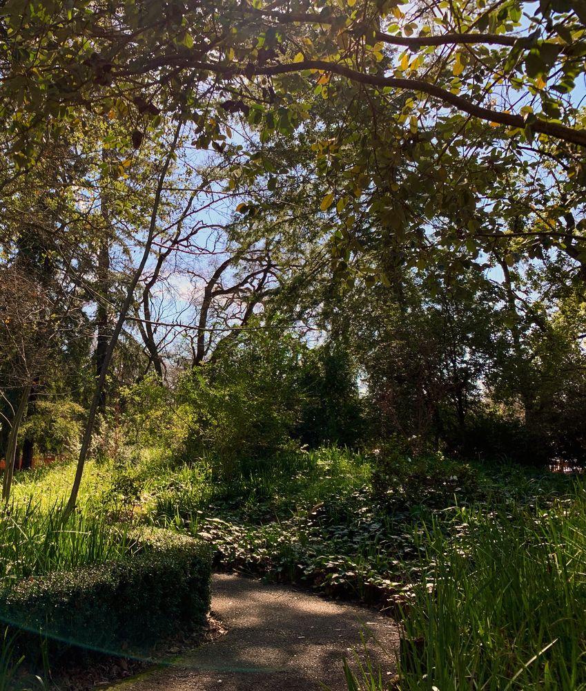 Japanese Garden at Mick Grove Park