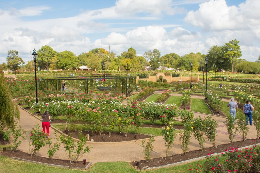 Rose Park in Tyler