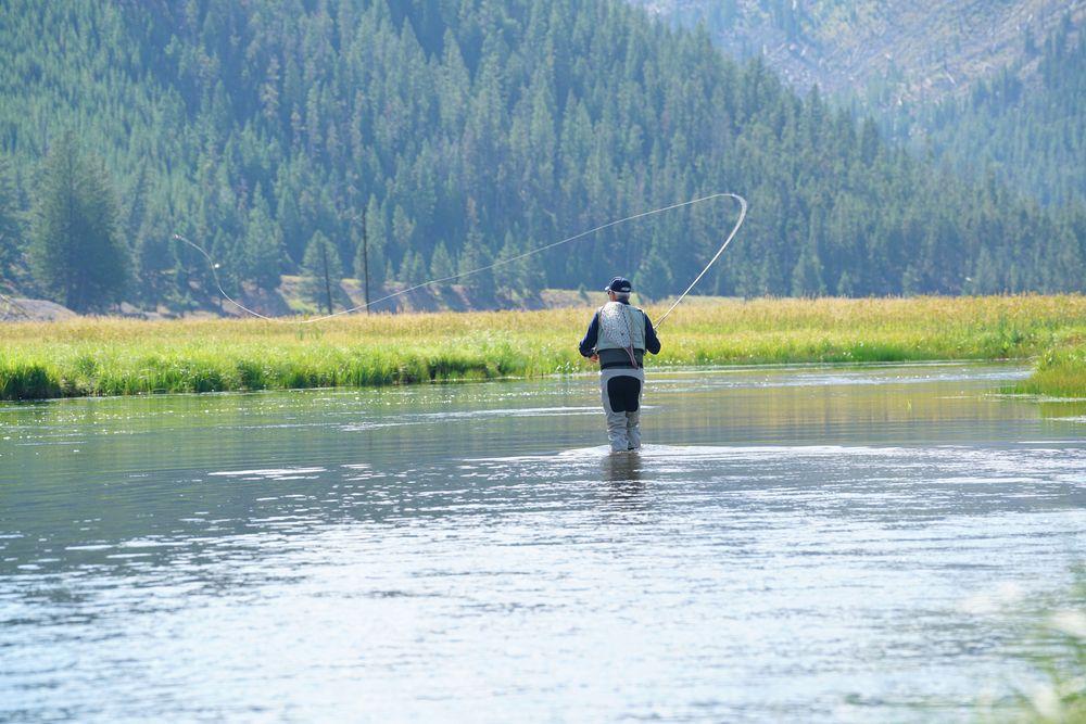 Fly fishing at Madison River