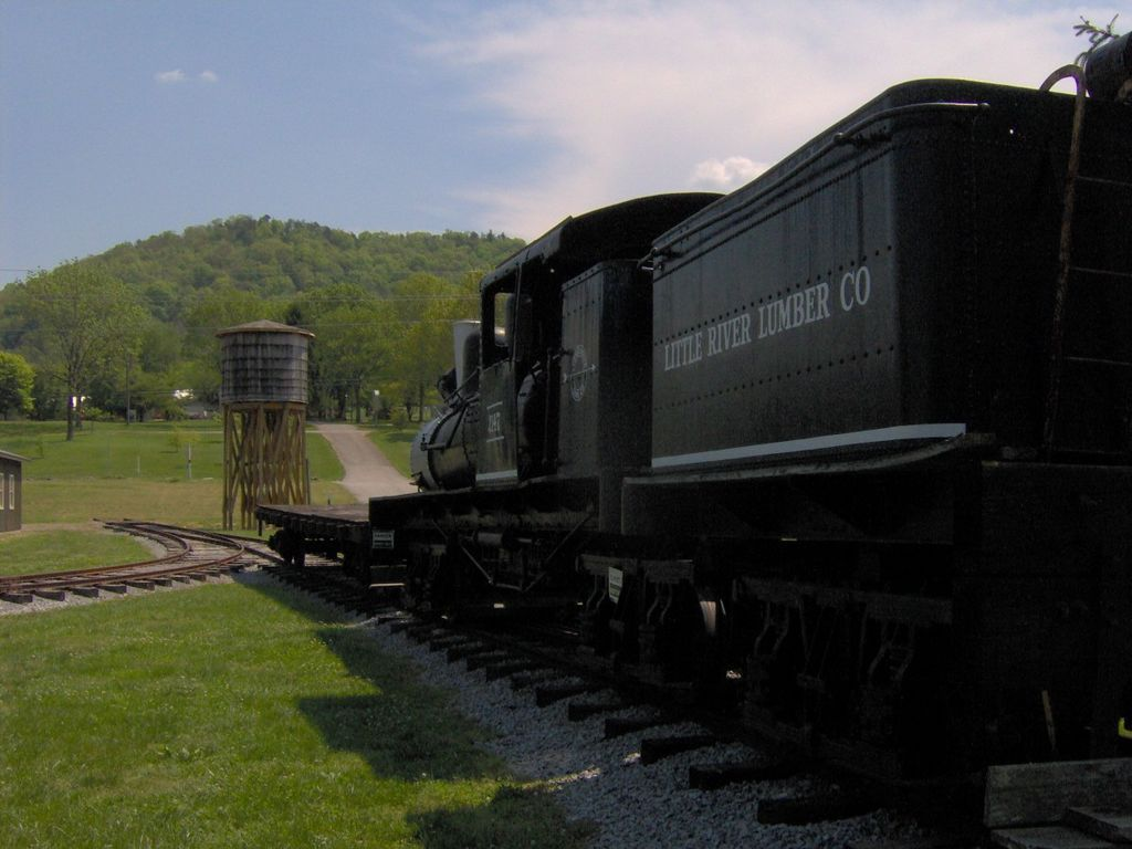 A train in The Little River Railroad and Lumber Company Museum