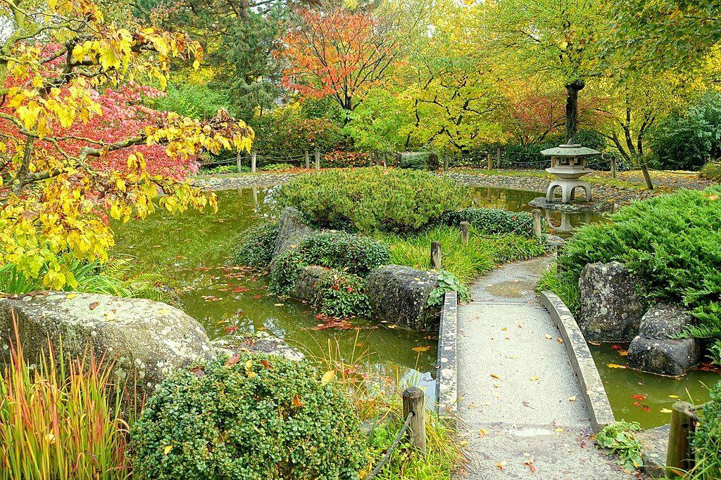 Japanesse garden at Wurzberg university